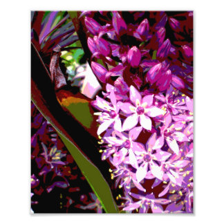 Jungle Greens and Hot Pink Flowers Photographic Print