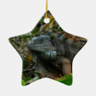 Jungle Iguana Ceramic Ornament