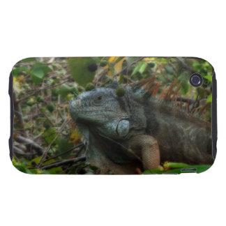 Jungle Iguana Tough iPhone 3 Cover