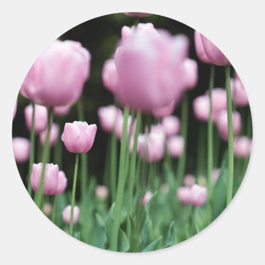 jungle in pink classic round sticker