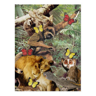 Jungle Jive Postcard