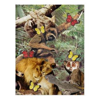Jungle Jive Postcard
