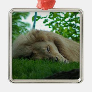 Jungle King Metal Ornament