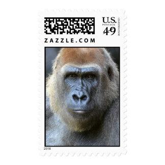 Jungle King Postage Stamp