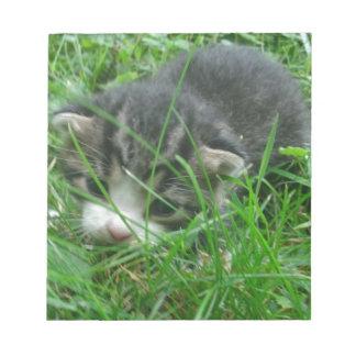 Jungle Kitten Notepad