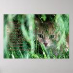 Jungle Legend Posters