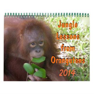 Jungle Lessons from Orangutans Wall Calendars