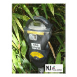 Jungle Meter Full Color Flyer