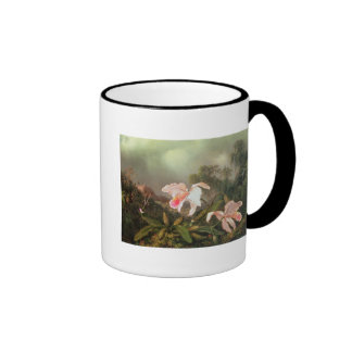 Jungle orchids and hummingbirds, 1872 mugs