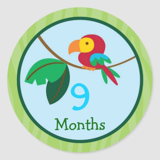 Jungle Parrot Monthly Milestone Stickers