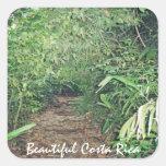 Jungle Path in Costa Rica Square Sticker