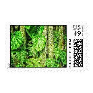 Jungle Postage