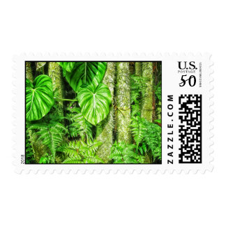 Jungle Postage