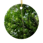 Jungle Ropes Tropical Rainforest Photo Ceramic Ornament