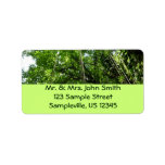 Jungle Ropes Tropical Rainforest Photo Label