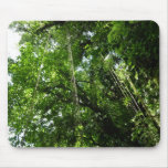Jungle Ropes Tropical Rainforest Photo Mouse Pad