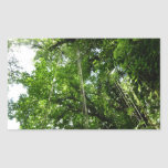 Jungle Ropes Tropical Rainforest Photo Rectangular Sticker