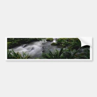 Jungle Stream River Landscape Amazon Bumper Sticker