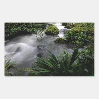 Jungle Stream River Landscape Amazon Rectangle Sticker