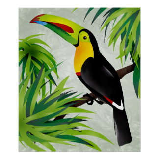 Jungle Toucan Poster