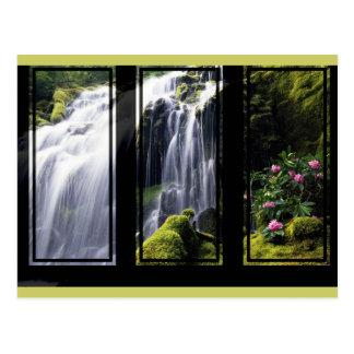 Jungle Waterfall Triptych Digital Art Postcard