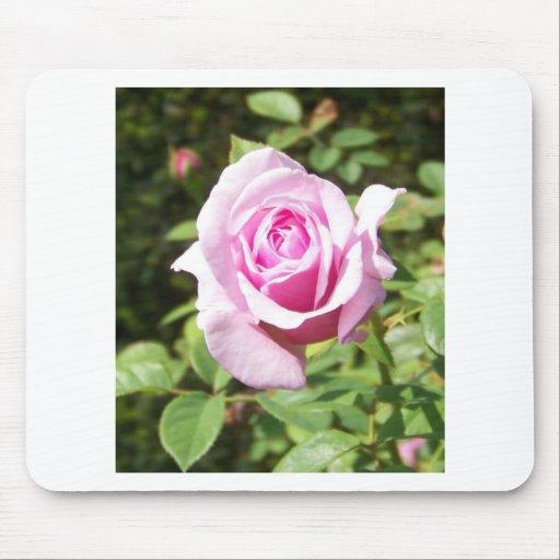 Junio subió - rosa tapete de ratones