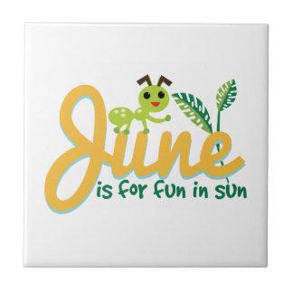 Junio Sun Tejas Cerámicas