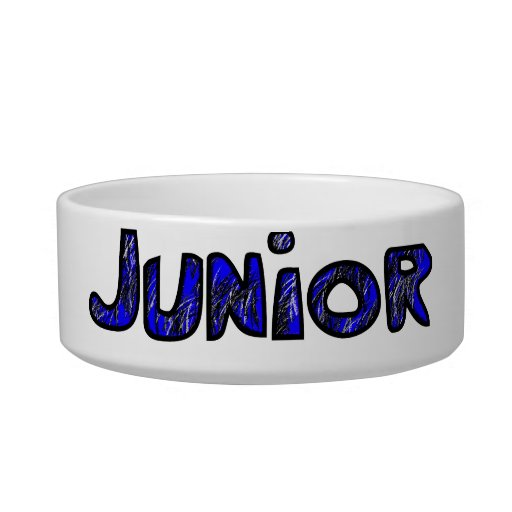 Junior Bowl