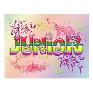 Junior - Flowers 2 Postcard