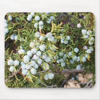 Juniper Berries Mouse Pad