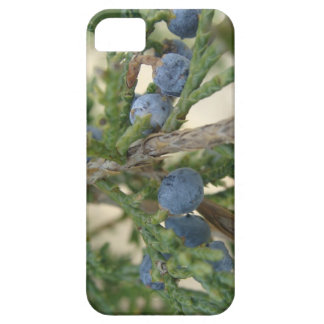 Juniper Berry iPhone 5 Case-Mate
