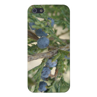 Juniper Berry iPhone 5 Savvy Case