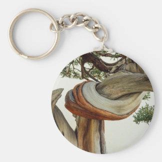 Juniper bonsai detail keychain