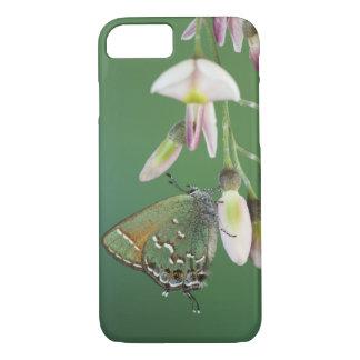 Juniper Hairstreak, Callophrys gryneus, adult on iPhone 7 Case