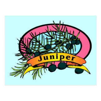 Juniper Postcard
