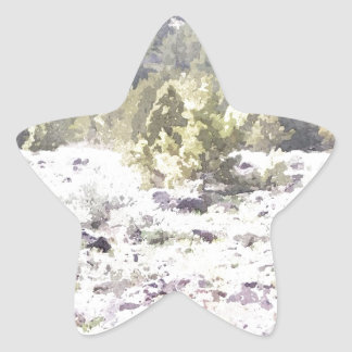 Junipers and Lava Rock in Watercolor Star Sticker