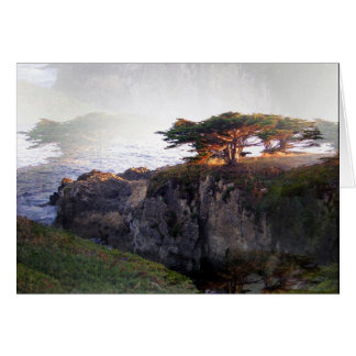 Junipers: Double Vision Greeting Card