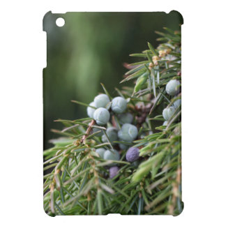 Juniperus berries on a tree iPad mini covers