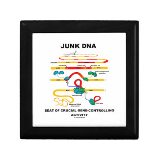 Junk DNA Seat Of Crucial Gene-Controlling Activity Jewelry Box