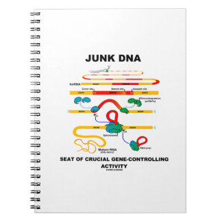 Junk DNA Seat Of Crucial Gene-Controlling Activity Notebook