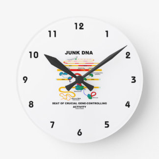 Junk DNA Seat Of Crucial Gene-Controlling Activity Round Clock