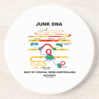 Junk DNA Seat Of Crucial Gene-Controlling Activity Sandstone Coaster