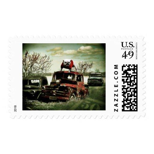Junkyard UGA Postage