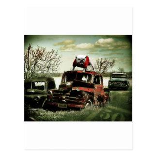 Junkyard UGA Postcard
