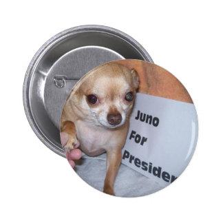 Juno para el presidente pins
