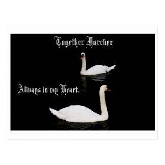 Junto para siempre cisnes tarjetas postales