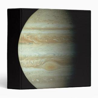 Jupiter 2 vinyl binders