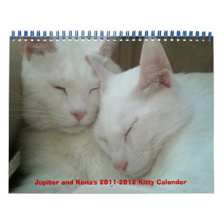 Jupiter and Kona's 2011-2012 Kitty Calender Calendar