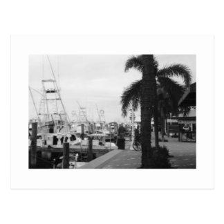 Jupiter, Florida Black & White Photo postcard