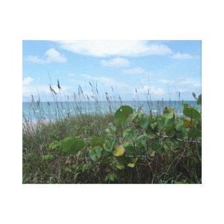 Jupiter Island – Florida – Sunny Beach Tranquility Canvas Print
